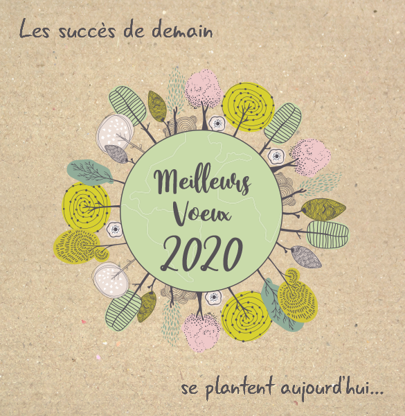 voeux-geoconcept-2020